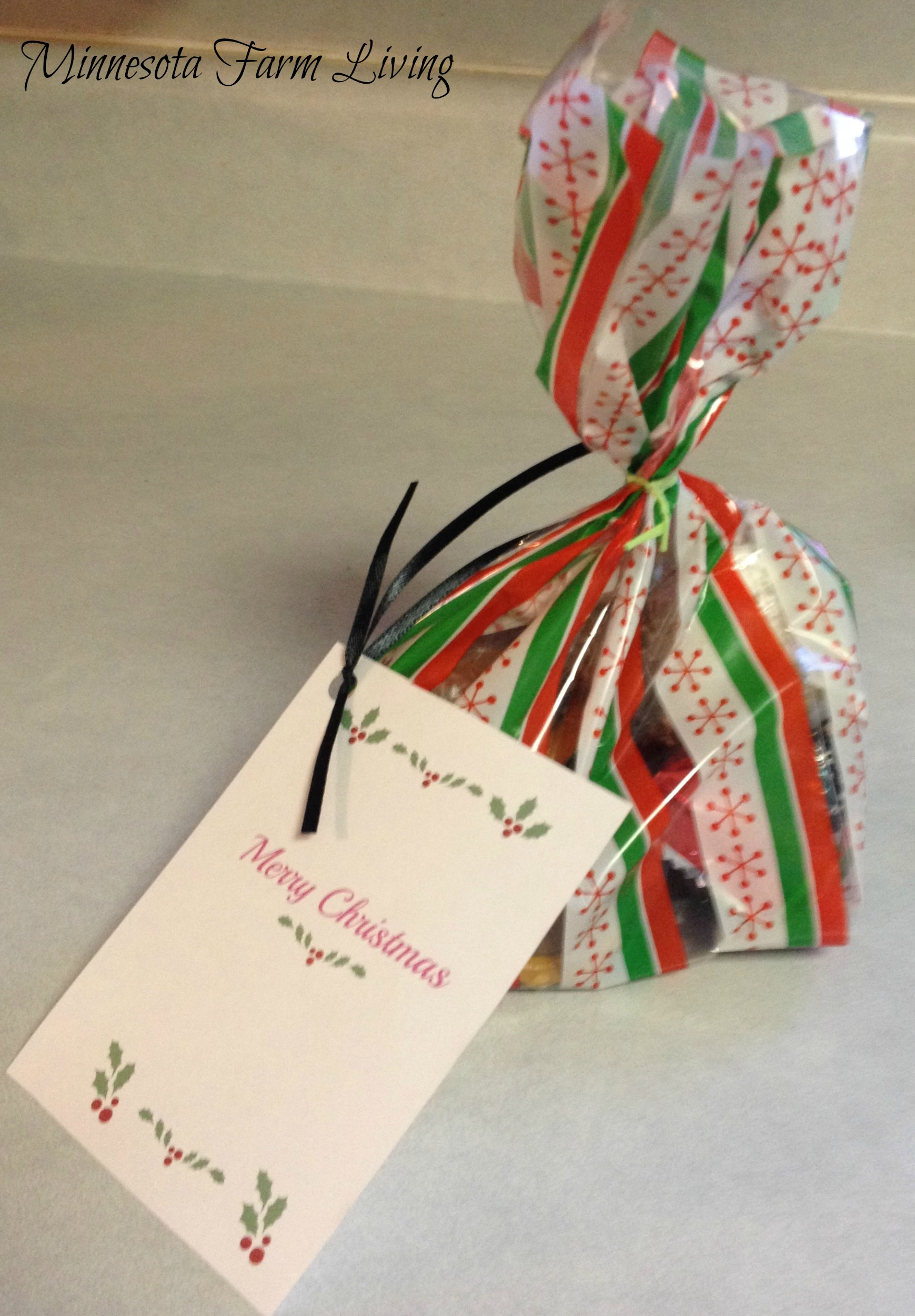 Day 17 – Random Act of Christmas Kindness – Senior Citizens