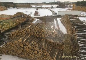 Potlatch Lumber