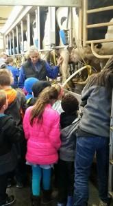 Dutch Creek Dairy