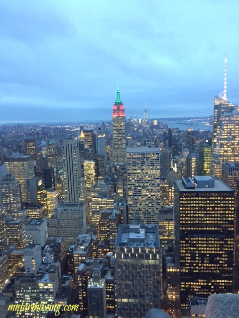 Top 8 Must See and Do In New York City