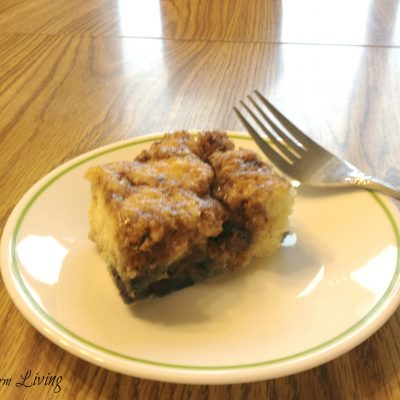 Simple Blueberry Coffee Cake
